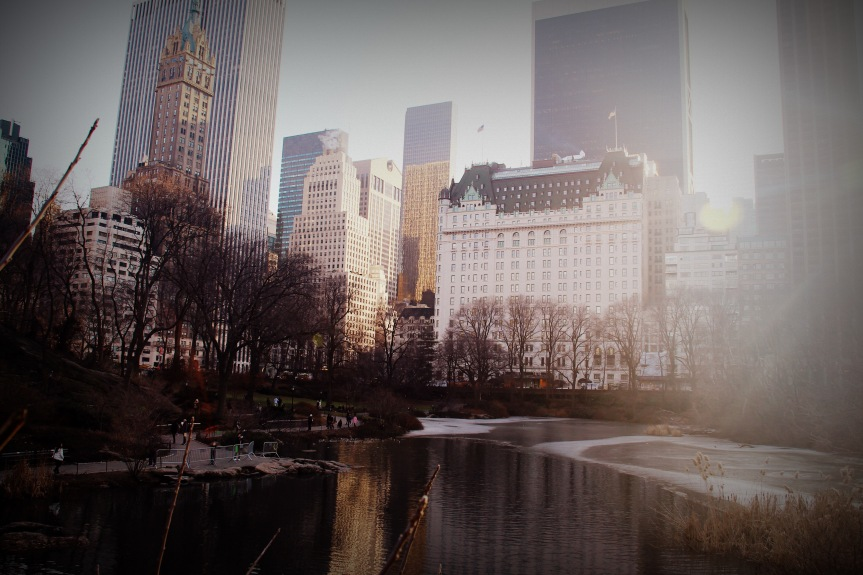 The view of the city from Central Park.